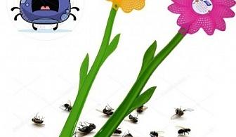 Палка за мухи - цвете