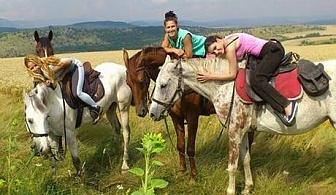Петдневно обучение по конна езда с инструктор + преход във Витоша само за 85 лв. от Езда София