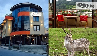 """Почивка в Девин! 2 нощувки със закуски + ползване на сауна, парня баня и релакс зона и посещение на резерват """"Извора"""" и фотолов на диви животни, от Маунтин Бутик хотел"""