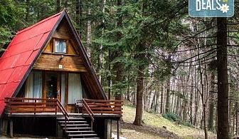 Почивка през лятото във вилни селища Ягода и Малина, Боровец - наем на вила за 1 нощувка за от 1 до 4 човека!