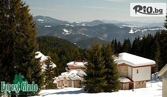 Почивка в Родопите през Януари! 2 или 3 нощувки със закуски и вечери + релакс пакет и басейн с минерална вода, от Хотел Форест Глейд, Пампорово