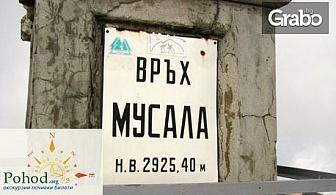 На покрива на Балканите! Еднодневна екскурзия до връх Мусала на 15 Юни