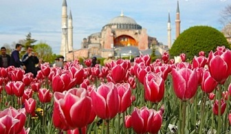 Посетете фестивалa на лалето в Истанбул! Транспорт + 2 нощувки със закуски и богата туристическа програма от Еко Тур Къмпани