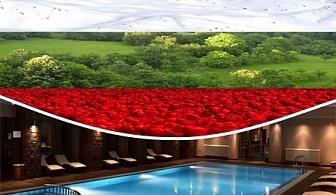 Посрещнете Националния празник на България в уюта на Сана СПА**** Хисаря!