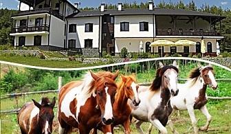 2 или повече нощувки на човек със закуски, обеди и вечери + конна езда от приключенска къща и конна база Русалиите, с. Бачево до Банско