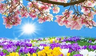 Празнувайте Цветница с екскурзия до Солун, Гърция! Транспорт + нощувка със закуска в хотел Sun Beach 4* с Далла Турс!