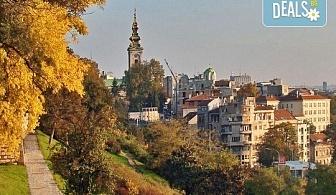 Предколедна екскурзия в Белград, Сърбия един ден с транспорт и екскурзовод от Глобул Турс!