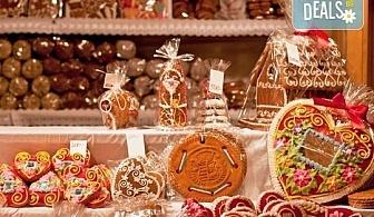 Предколедна екскурзия до Централна Европа! Потопете се сред блясъка на Коледните базари на Будапеща и Виена - 2 нощувки със закуски в хотел 3*, транспорт и водач от Дрийм Тур!