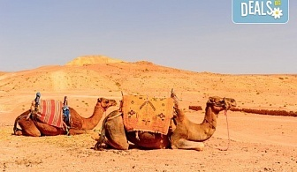 През есента до екзотичния Дубай! 4 нощувки със закуски и вечери в хотел 3* или 4*, самолетен билет, трансфери, сафари в пустинята, посещение на Абу Даби и круиз в Дубай Марина!
