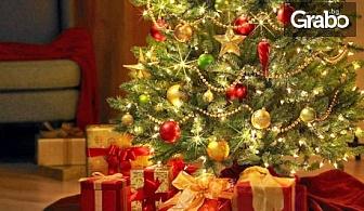 Приказна Коледа в Говедарци! 3 нощувки със закуски и вечери, две от които празнични