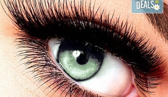 Приковаващи очи! Поставяне на 3D мигли от естествен косъм в салон за красота Женско царство - Център!