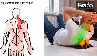 3 процедури за рехабилитация на болки и травми с електротерапия Bluetens и иновативен ролер масажор HighRoller