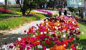Пролетна екскурзия до Истанбул по време на Фестивала на лалето! 2 нощувки и закуски в Hotel Yaztur 3*, транспорт и посещение на Одрин