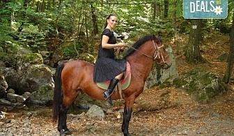 """Промоционална оферта от конна база """"Св. Иван Рилски"""" за конна езда на чист въздух във Владая!"""