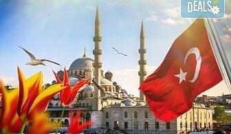 Ранни записвания за екскурзия за Фестивала на лалето в Истанбул през 2020! 2 нощувки със закуски в хотел 3*, транспорт и екскурзовод от Еко Тур!