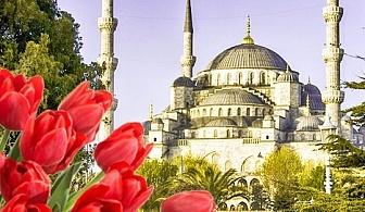 Ранни записвания за екскурзия до Истанбул през април за Фестивала на лалето с ТА Поход! 2 нощувки със закуски, транспорт и посещение на Одрин!