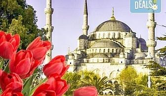 Ранни записвания за Фестивал на лалето през 2019-та в Истанбул! 2 нощувки със закуски, транспорт, водач и посещение на Одрин