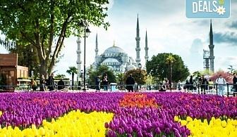 Ранни записвания за Фестивала на лалето в Истанбул! 2 нощувки със закуски в хотел Qua 5*, транспорт, посещение на мол в Истанбул и програма в Одрин