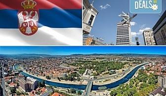 Разходете се до Ниш, Пиротивинарна Малча, Сърбия: 1 нощувка със закуска и вечеря, транспорт и водач от Комфорт Травел!