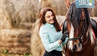 """Разходка сред природата! 45-минутен урок по конна езда в конна база """"София – Юг"""", Драгалевци!"""