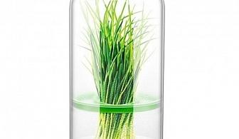 Съд за съхранение на тревни подправки Tescoma от серия Sense