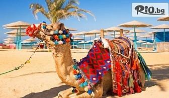 Самолетна екскурзия до Египет с круиз по река Нил - 4 нощувки на кораб на база пълен пансион и 3 нощувки в Хургада на база All Inclusive, от Онекс Тур