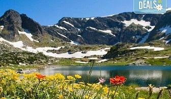 До Седемте рилски езера на дата по избор, с Дари Травел! 1 нощувка със закуска хотел Панорама 2* в Паничище, транспорт и планински водач