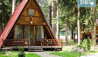 Студентски празник във вилни селища Ягода и Малина, Боровец - наем на вила за 1 нощувка за от 1 до 4 човека!