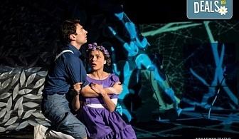 """На театър с децата! Гледайте новата приказка """"Хензел и Гретел"""" на 27.10. от 16 ч. в Младежки театър, голяма сцена! Билет за един"""