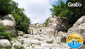 Три екскурзии в България и чужбина, по избор