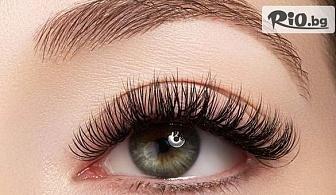 """Удължаване и сгъстяване на мигли от Норка по метода """"косъм по косъм"""" с 63% отстъпка, от Solo M"""