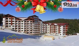 Вълшебна Коледа в Пампорово! 2, 3 или 4 нощувки за двама със закуски и вечери /2, от които Празнични/ + басейн и сауна, от Комплекс Forest Nook 3*