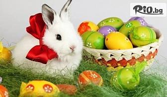 Великден в Слънчев бряг! 2, 3 или 4 нощувки със закуски, вечери и празничен обяд + сауна и фитнес, от Хотел Дариус
