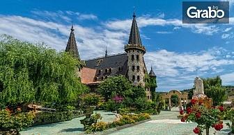 """Вход за Замъка """"Влюбен във вятъра""""в Равадиново, плюс посещение на Арт галерия"""