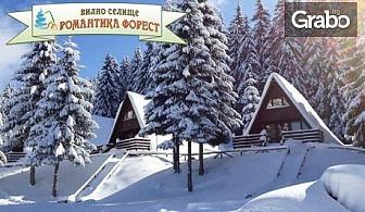 Януари в Родопите, край яз. Широка поляна! Нощувка за до 10 човека във вила