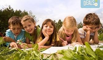 Запишете детето си на лятна полудневна или целодневна езикова занималня от Академия за деца Language kids!